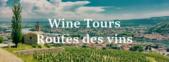 circuits oneologiques france - route des vins