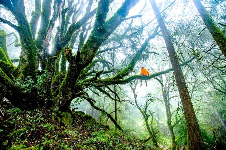 Stage survie Bushcraft Famille Bretagne France - Tourisme Activite Experience Nature