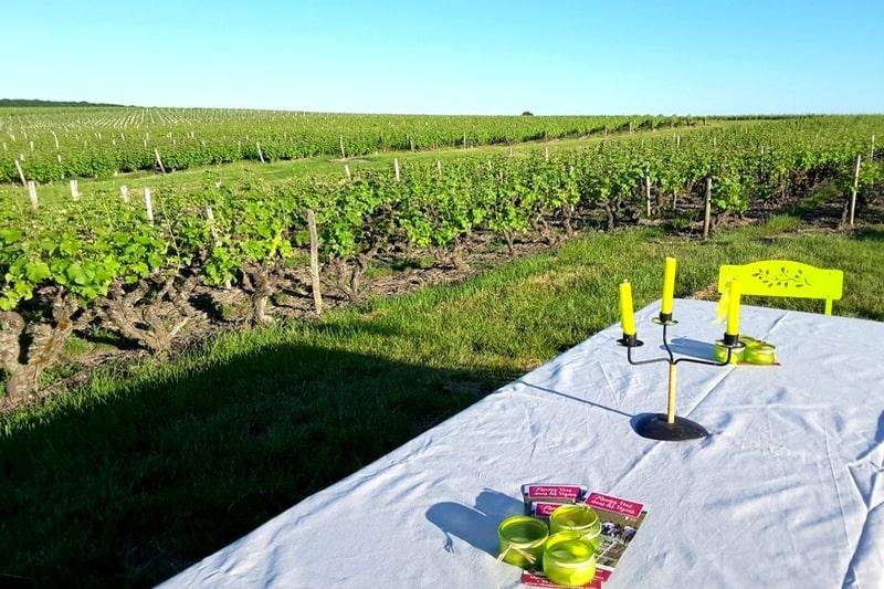 Visite oenologique vins de loire aoc vouvray degustation cave vignoble touraine angers tours