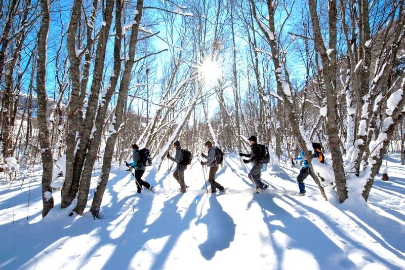 randonnee privee raquette neige alpes mont blanc chamonix