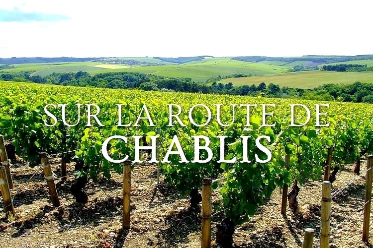 Tidden - visite route des vins chablis depart paris accord mets et vins
