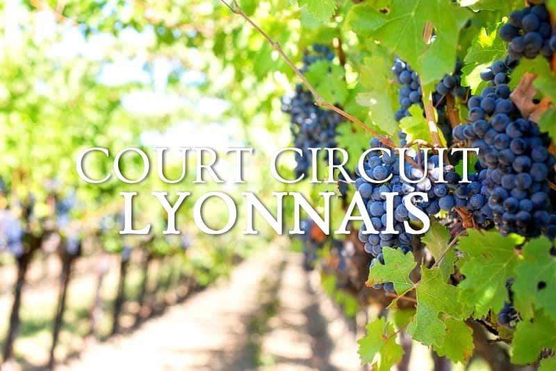 Tidden - excursion guide prive degustation produits locaux vins terroir