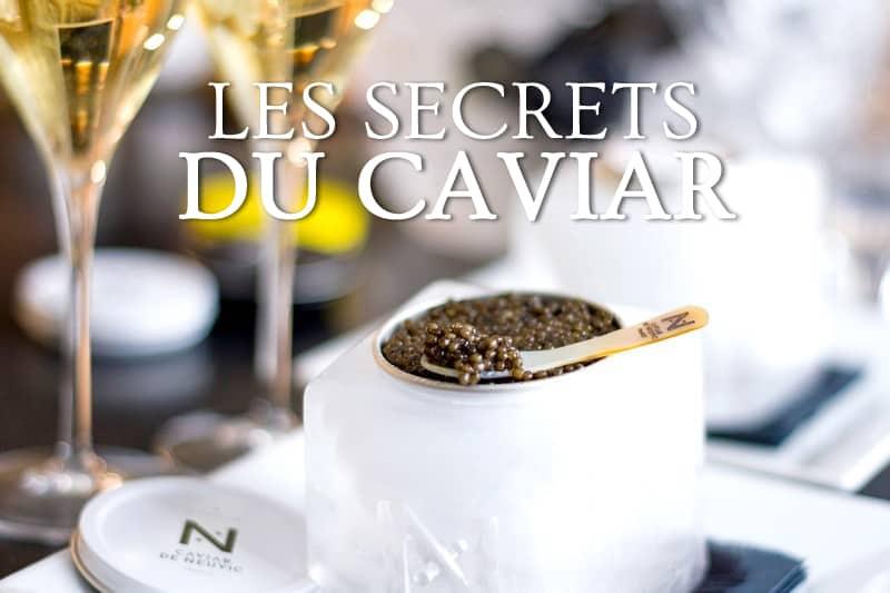 Tidden - visite ferme esturgeon france dordogne neuvic degustation caviar masterclass