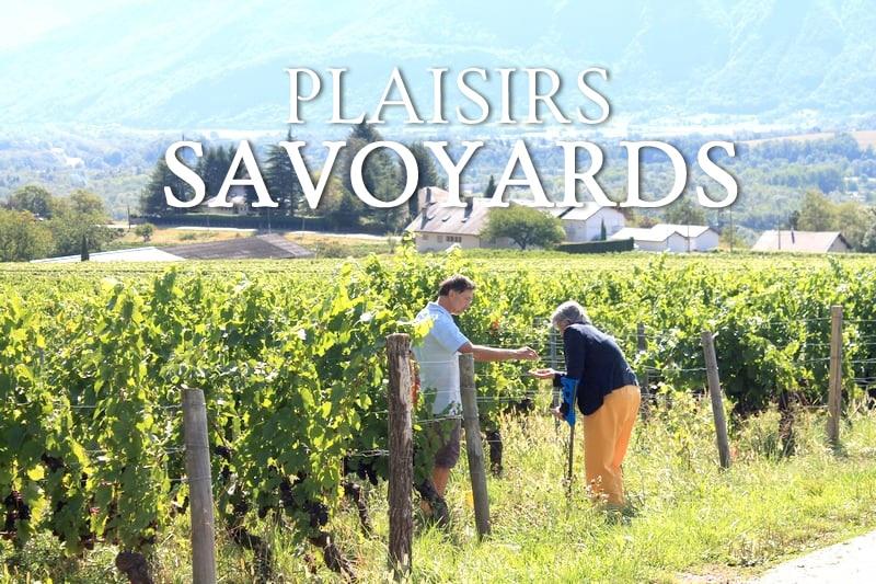 Tidden - visite guidee chauffeur route des vins de savoie degustations