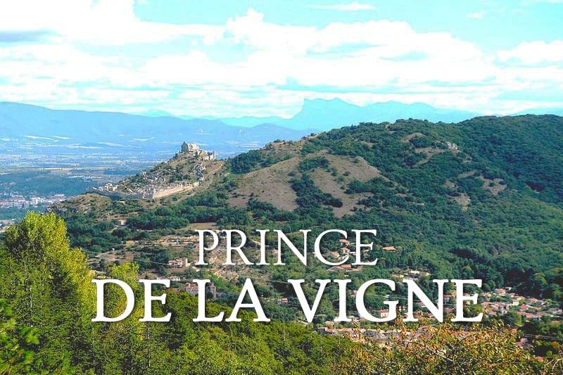 Tidden - circuit visite œnotouristique privée hermitage cornas et saint peray degustation de grands vins
