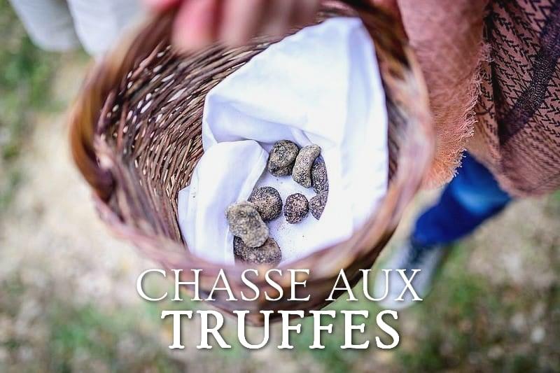 Tidden - chasse au truffes truffles hunting provence