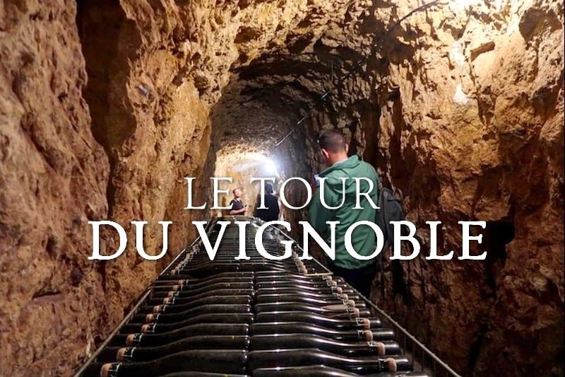 Tidden - visite degustation vignoble vouvray touraine cave vigne